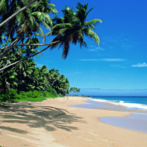 Sri Lanka Campaign Ethical Tourism image of a beach